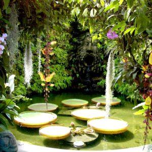 Mortella Garden - Ischia