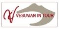 Vesuvian In Tour