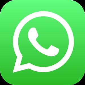 whatsapp tour campania